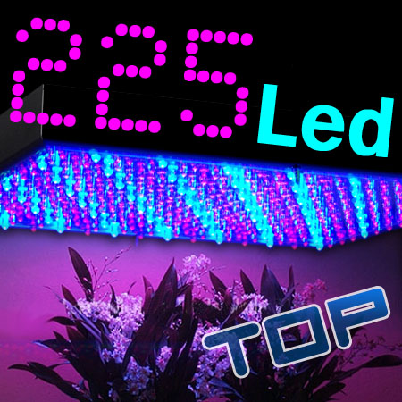LED-Pflanzen-Grow-Lampe-225-LEDs-Rot-Blau-Beleuchtung